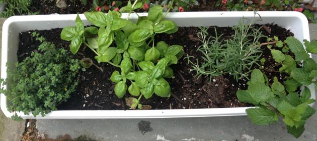 Herb garden de Krystina