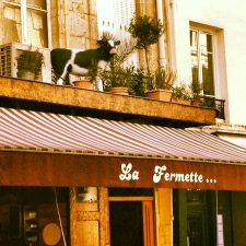 best cheese shop on Rue Montorgueil